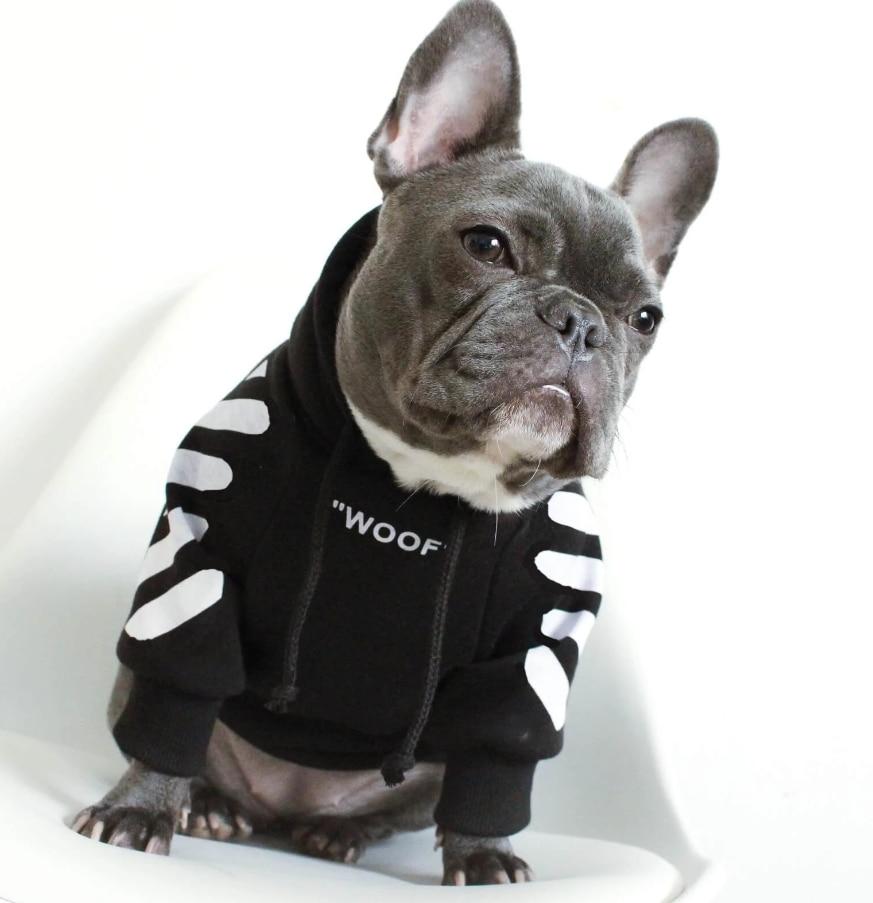 purchasing pet garments